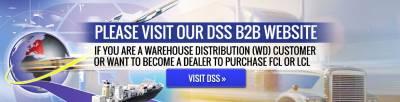 Visit DSS B2b